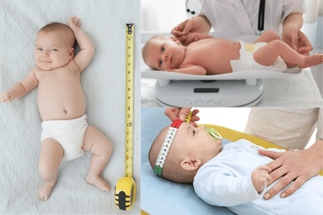 Измеряем младенца